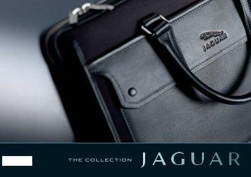 Untitled - Jaguar