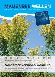 welle 01-11-v2 - Gemeinde Mauensee