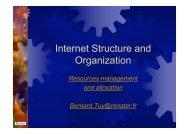 Internet Structure and Organization - Renater