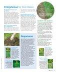 Schöner Rasen von Anfang an - Schneckenprofi - Seite 6