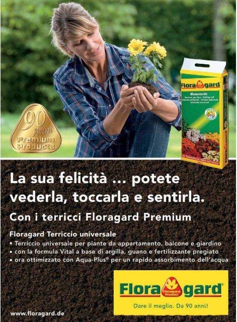Per ca 50 piante Papaver orientale brillante semi sementi arbusti sconti orti