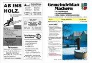 Amtsblatt Nr. 171 Februar 2009 - Gemeinde Machern