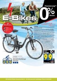 E-Bike Prospekt Var1_8S.fx - radhaus koch