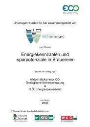 Energiekennzahlen und Sparpotenziale in Brauereien 1 - WIN