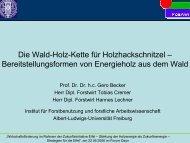 Die Wald-Holz-Kette für Holzhackschnitzel – Bereitstellungsformen ...
