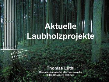Aktuelle Laubholzprojekte - IfB - ETH Zürich