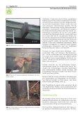 3/1 Frei bewitterte BS-Holzkonstruktion - Björn Dinger - Seite 2