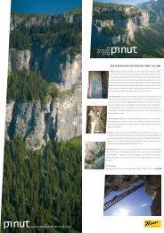 Flyer Pinut - Flims