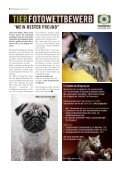 Südstadt Journal 04/2012 - LeineVision. - Page 6