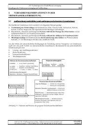 skriptum 811.301 kapitel 6 verfahrenskombination / 04.12.2012