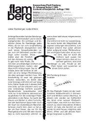 Verwaltungsstab - Pfadi Flamberg