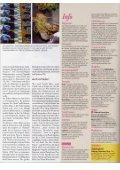 Pubblicazione1 - Capanna d'oro - Page 4