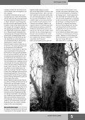 SOTE 2005_1 - IFZ - Seite 5