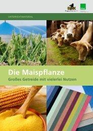 Großes Getreide mit vielerlei Nutzen - information.medien.agrar eV