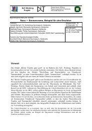 PDF-Datei - Nat-Working - Naturwissenschaft und Technik