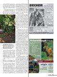 """Der """"Mythos"""" aus Italien - Seite 6"""