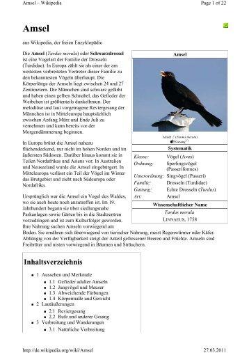 Der Ruf Der Amsel Das Nest Eine Erzählung