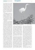 kurz berichtet - LBV-München - Seite 5