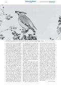 kurz berichtet - LBV-München - Seite 6