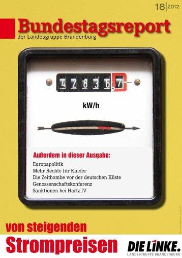 Bundestagsreport 18 2012 - Dagmar Enkelmann