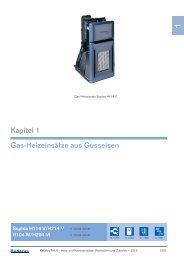 Kapitel 1 Gas-Heizeinsätze aus Gusseisen - Buderus
