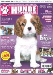 Hundereporter.de 6/2012 - Amovendo