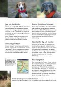 HÄR ÄR HUNDEN! HÄR ÄR HUNDEN! - Protekt AS - Page 3