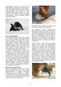 Anita Schneider - Page 4