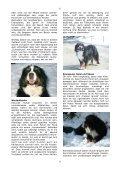 Anita Schneider - Page 6