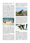 Anita Schneider - Page 7
