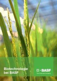Biotechnologie bei BASF - BASF.com