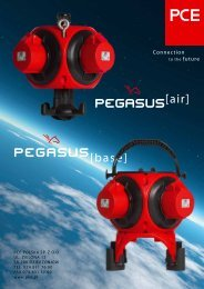 PEGASUS[air] PEGASUS[base] - PCE Dzierżoniów