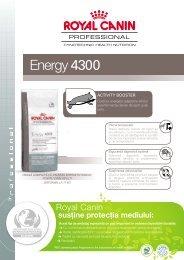 Energy 4300 - Royal Canin