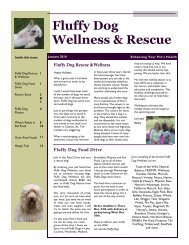 Fluffy Dog Wellness & Rescue