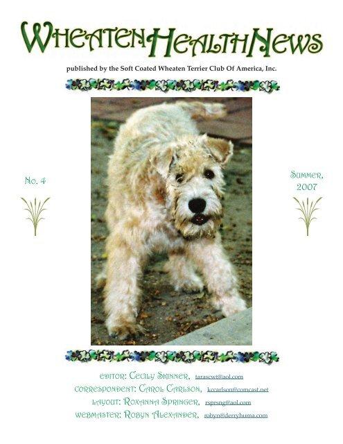 Health News Soft Coated Wheaten Terrier Club Of America