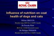 Canine Dermatology.pdf - Royal Canin Canada