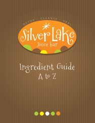 Ingredient Guide - Silver Lake Juice Bar