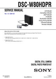dsc-w80hdpr digital still camera digital photo printer kit