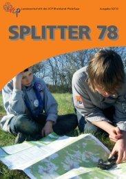 Splitter 2/2010 - VCP Land Rheinland-Pfalz/Saar