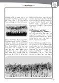 Splitter 2/2010 - VCP Land Rheinland-Pfalz/Saar - Seite 5