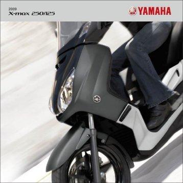 X-max 250/125 - BM Motor