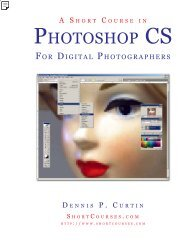 The Textbook in Digital Photography Project - PhotoCourse
