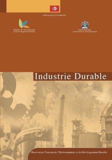 Rapport industrie durable - Ministère de l'environnement et du ...