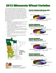 2012 Minnesota Wheat Varieties - Small Grains