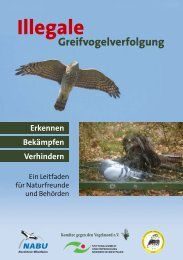 Illegale Greifvogelverfolgung - LBV Landshut