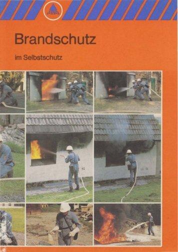 BVS Brandschutz (1993)