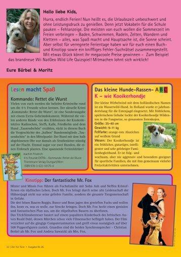 Das kleine Hunde-Rassen- ABC K – wie Kooikerhondje - Zeit für Tiere.