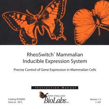 Manual - New England Biolabs