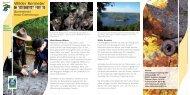 Barrierefreier Natur-Erlebnisraum Wilder Kermeter - Nationalpark Eifel
