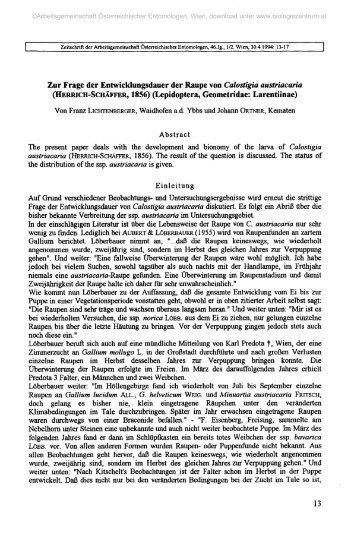 Zur Frage der Entwicklungsdauer der Raupe von Calostigia ...